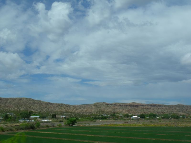 2014_0420cruces0027